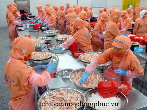 Chuyên may nón ngành thủy sản